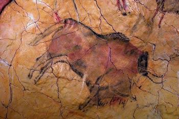 http://museodealtamira.mcu.es/Prehistoria_y_Arte/la_cueva.html