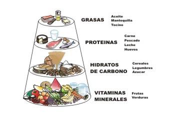 """""""Tipos de alimentos según su contenido"""""""