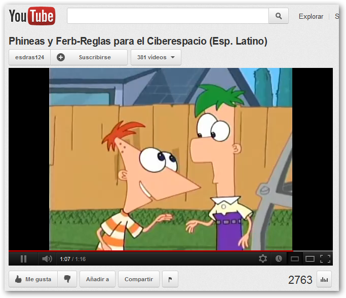 Detalle del vídeo