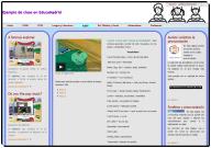 Archivo:Ejemplo2 diseñadorweb.png