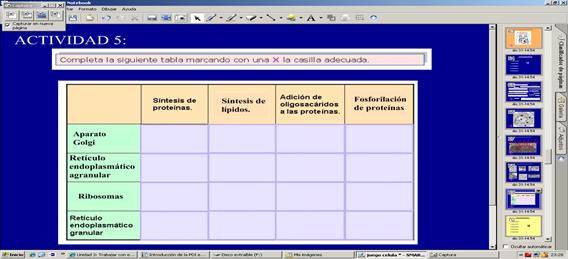 Ejemplo de tabla de datos